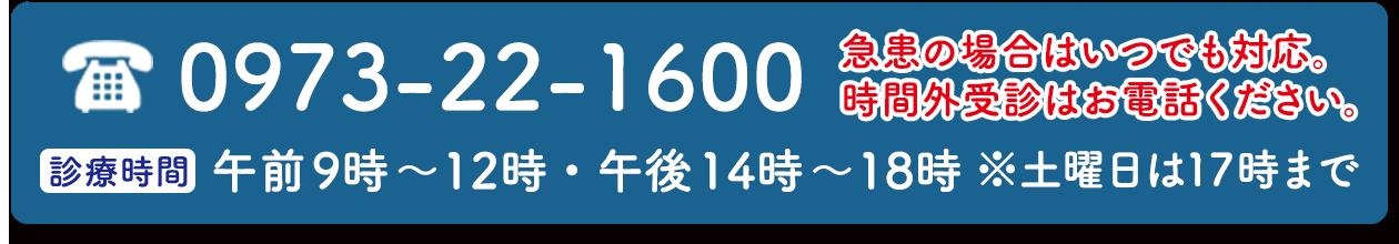 0973-22-1600